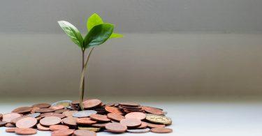 El ingreso mínimo vital:cómo y cuándo se solicita
